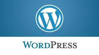 WordPress sites worldwide experience brute force attack