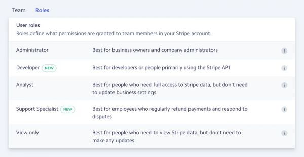 Stripe-Dashboard-Developer-Access